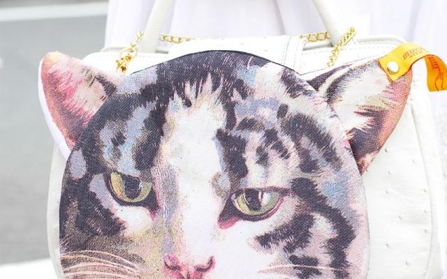 Kočičí taška