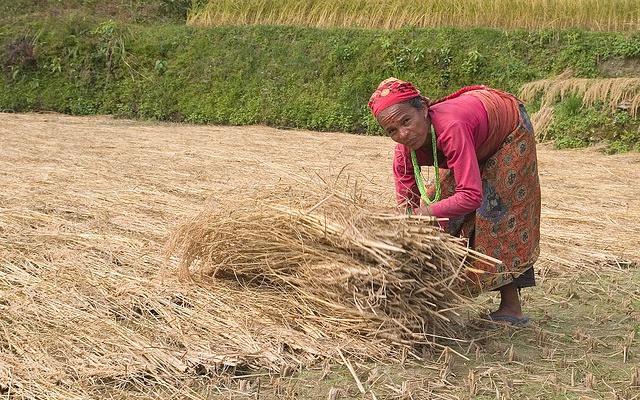 Nepálská žena