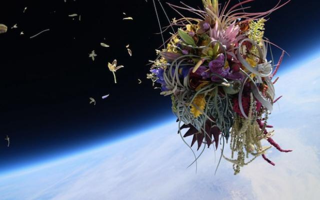 Květiny ve vesmíru