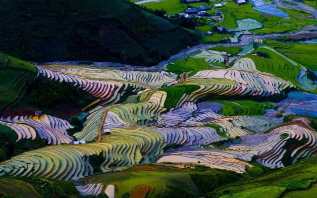 Rýžové terasy v LongSheng