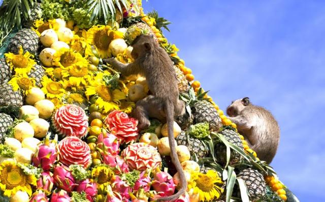 Opičí hody