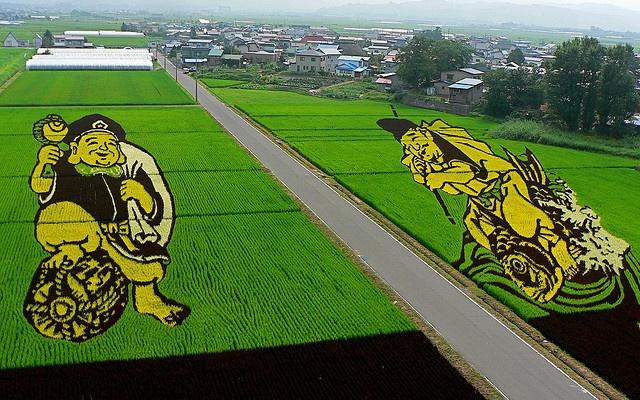 Obraz z rýže