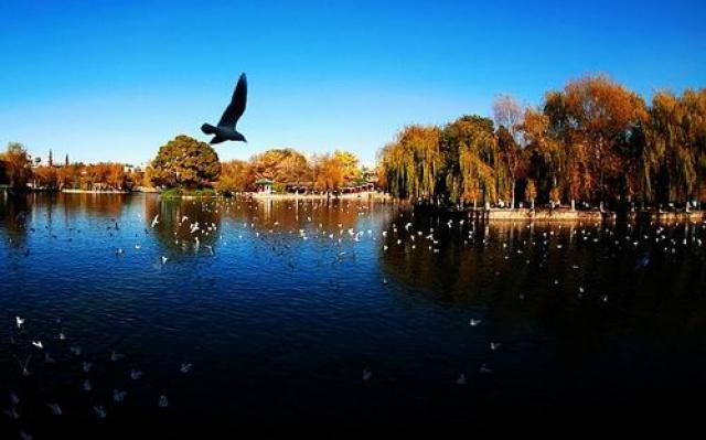 Park zeleného jezera