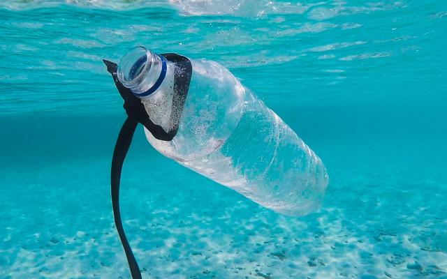 Znečištěné oceány patří mezi hlavní problém naší doby.