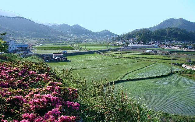 Korejský venkov