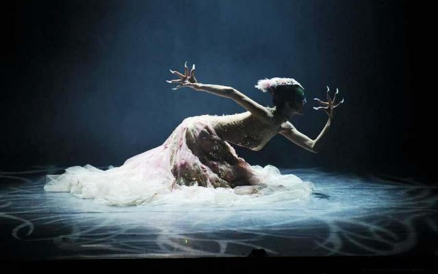 Yang Liping a její představení nazvané Páv