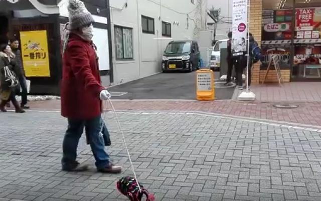 Páníček a jeho neviditelný pes