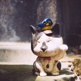 Kočka pro štěstí na ostrově Tashirojima