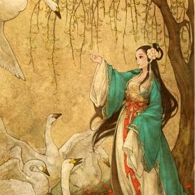 O jedenácti labutích