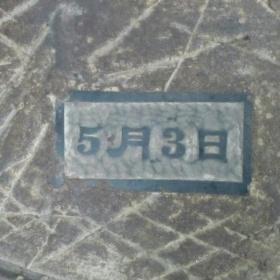 Na kamenných cestičkách byla data, daly se najít všechny dny v roce (snad kromě 29. února). Já jsem si vyfotila své datum narození.